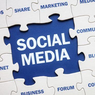 Social Media Management Pro