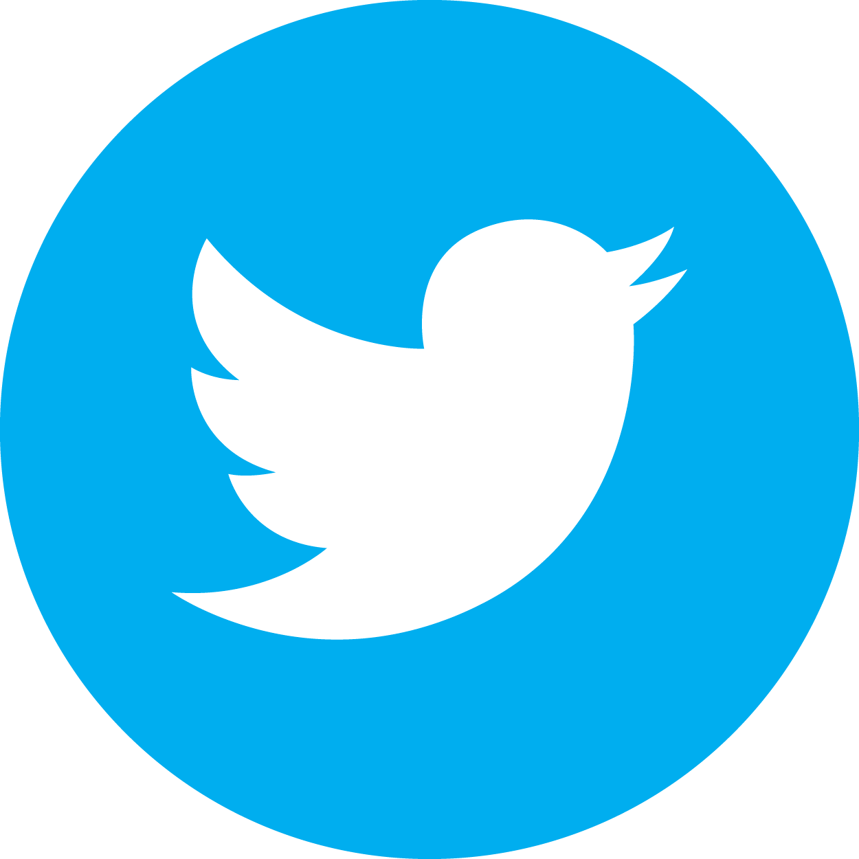 VXTTwitterIcon